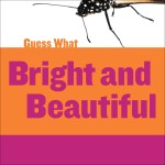 Bright and Beautiful: Butterfly: Read Along or Enhanced eBook