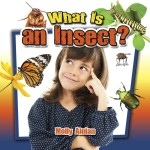 What is an insect?: Read Along or Enhanced eBook