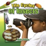 Life Cycles of Insects: Read Along or Enhanced eBook
