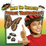 How Do Insects Protect Themselves?: Read Along or Enhanced eBook
