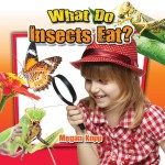 What Do Insects Eat?: Read Along or Enhanced eBook