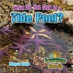What Do You Find in a Tide Pool?: Read Along or Enhanced eBook