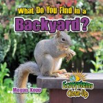 What Do You Find in a Backyard?: Read Along or Enhanced eBook