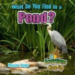 What Do You Find in a Pond?: Read Along or Enhanced eBook