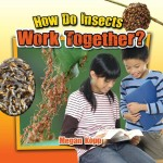 How Do Insects Work Together?: Read Along or Enhanced eBook