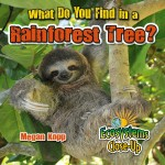 What Do You Find in a Rainforest Tree?: Read Along or Enhanced eBook