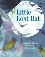 Little Lost Bat: Read Along or Enhanced eBook