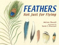 Feathers: Not Just for Flying: Read Along or Enhanced eBook