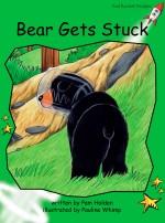 Bear Gets Stuck