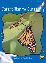 Caterpillar to Butterfly (Readaloud)