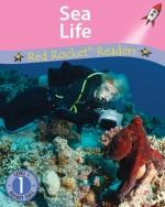 Sea Life (Readaloud)
