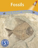 Fossils (Readaloud)